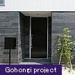 Gohongi project